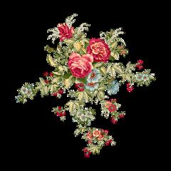 bmrs flowers flower freetoedit