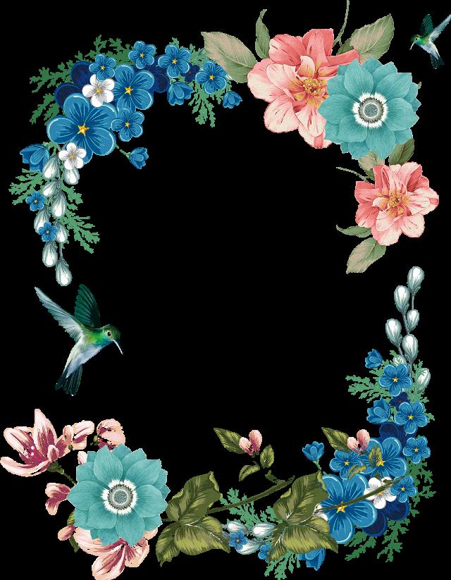 #frame #flower #flowers #floral #floralframe #flowersframe #tropical #tropicalflowers #tropicalframw #bird #birds #birdsframe #hummingbird #hummingbirds #hummingbirdsframe
