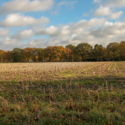 freetoedit landscape nature naturephotography natural