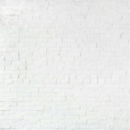 background white wall brick bricks ftestickers freetoedit