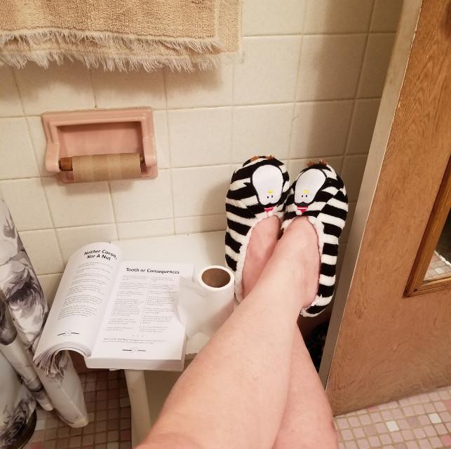 Bathroom life..with the bathroom bible... #humor #freetoedit