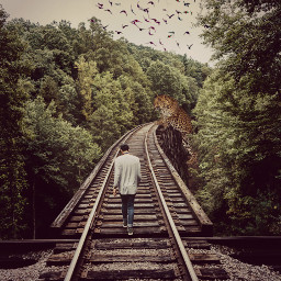 freetoedit railroadtracks adventure