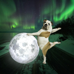freetoedit galaxyedit moon puppy road