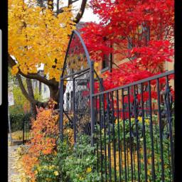 freetoedit myhome autumn original photo