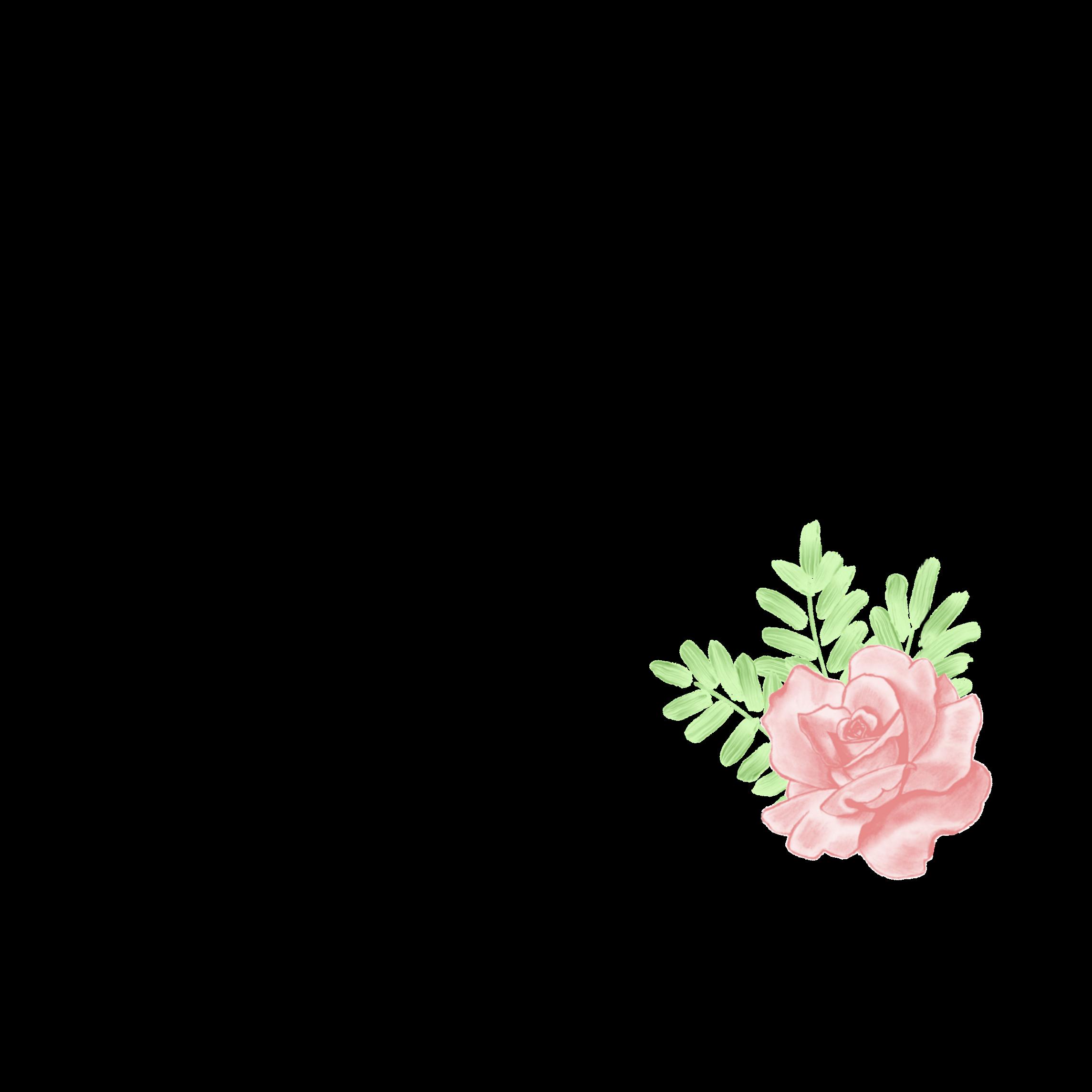Frame Tumblr Flower Flowerframe Tumblrframe Becreative