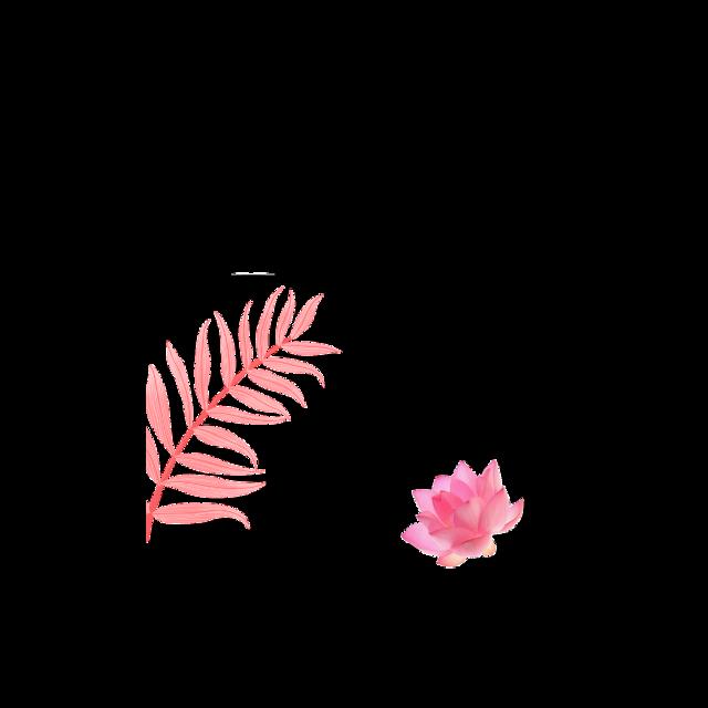 #frame #tumblr #tumblrframe #flower #flowerframe #aesthetic #girly #pink