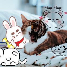 freetoedit lfl l4l editbyme meow