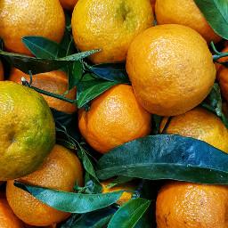 orange fruits natural love freetoedit
