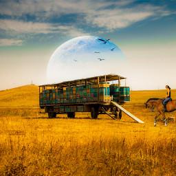 freetoedit wagon