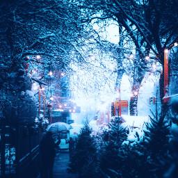 freetoedit winter christmas lights holidays