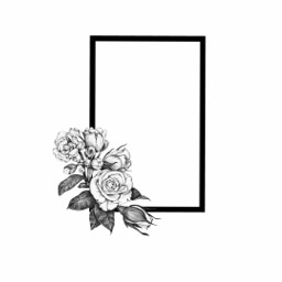 the1975 tattoo the1975edits roses rectangle freetoedit