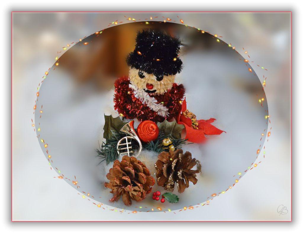 Decoration De Noel Photographiee Au Magasin Canadian