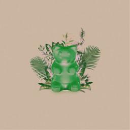 freetoedit cute green plant fotoedit