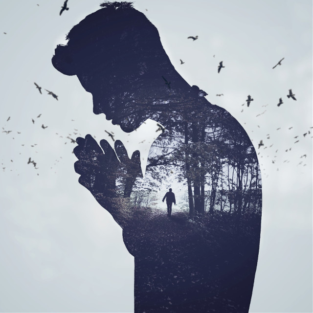 #freetoedit @pa @freetoedit #doubleexposure #picsart #forest #silhouette #people #man