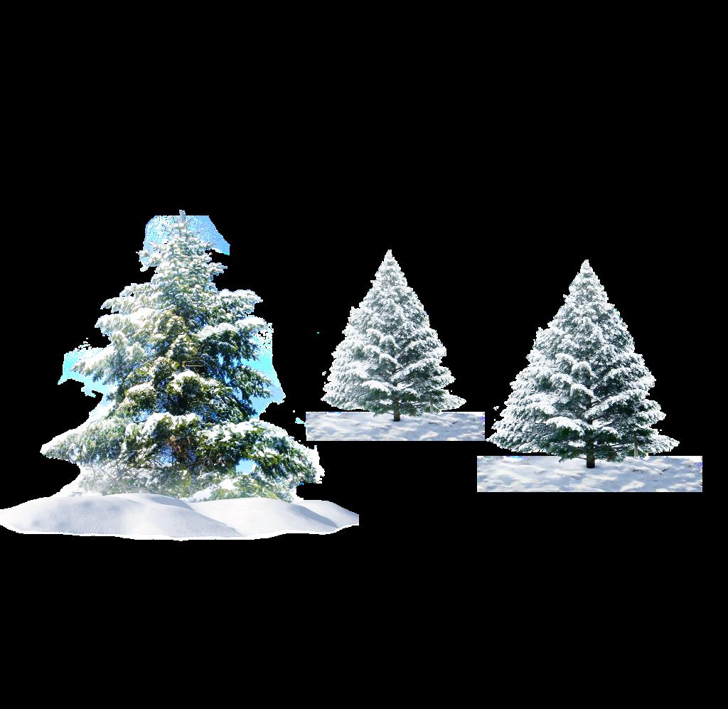 #ftestickers #winter #trees #pine #snow