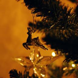 christmas christmastree christmastime christmasdecoration christmaslights freetoedit