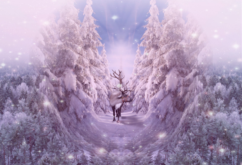#freetoedit #winter #winterwonderland #reindeer #fisheyeeffect #mirroreffect #mirrored #colorgradient  #colorgradientmask