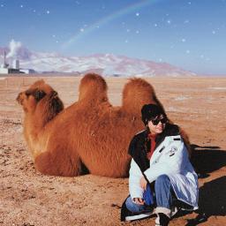 freetoedit mongoliatrip shtatw camel tereljpark