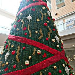 christmastree towncenter mall costadeleste panamá