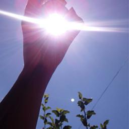 sunshine sun sol tumblr fototumblr freetoedit