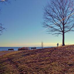 freetoedit nature ocen walkingalone sunburst
