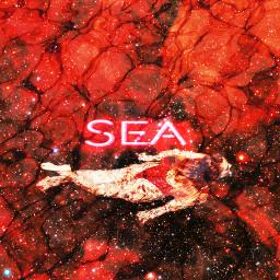 freetoedit sea swimminginthestars galaxygirl fx scarletstars
