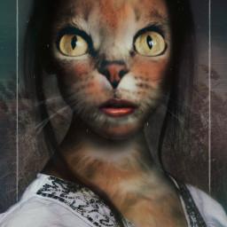 freetoedit cat animalhumanhybrid hybrid magicfx irchappymeowyear