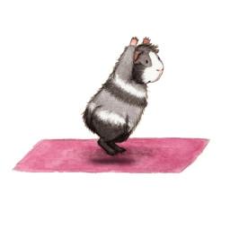freetoedit clipart hamster gerbil humor
