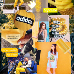 freetoedit yellowaesthetics yellowflowers yellowaesthetic tumblraesthetic