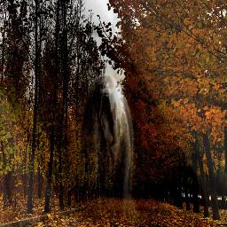 freetoedit hayalet forest geist horror