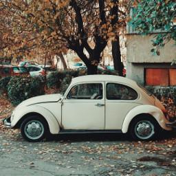 myphotography car oldcar retro photography freetoedit