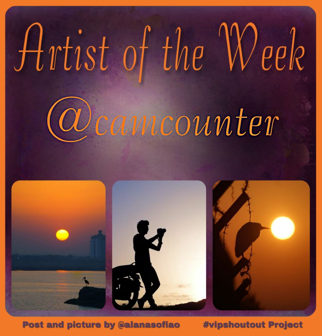 #nofeature #vipshoutout Picture collage and post by @alanasofiao Shouting out the photography gallery of @camcounter