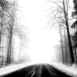 freetoedit vanishingpoint road tree snow