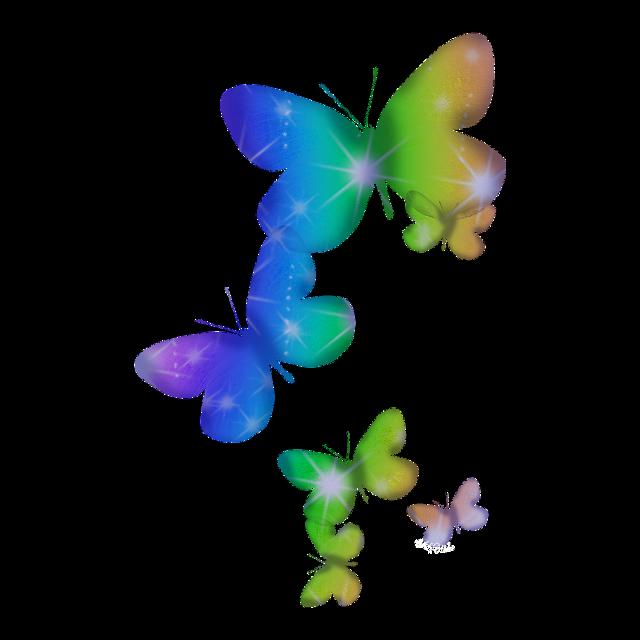 #butterfly #schmetterling
