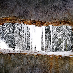 sarajevo ice winter window photography pcoutdoorwinter