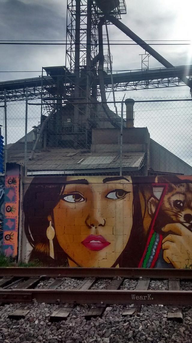 Me voy siguiendo el eco de tu voz entre la bruma Creyendo adivinarte en la voz que me nombra. Camino a ciegas por la senda en penumbra pero no sé si soy yo el que te sueña ó eres tu quien me inventa.   FO https://m.youtube.com/watch?v=HeshQIq1Fws&t=8s #railway #abandoned #decay #graffiti #street #urban #urbex #urbanexploration