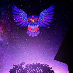 freetoedit vipshoutout nightsky owl colorful