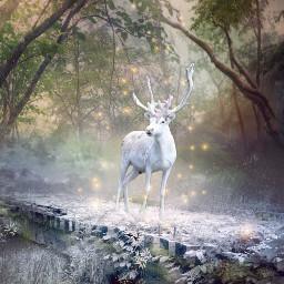 freetoedit onesparklebrush deer white magical