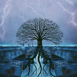 freetoedit treeoflife lightning