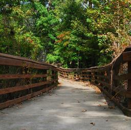 freetoedit walkinthepark photography path ashleyblack