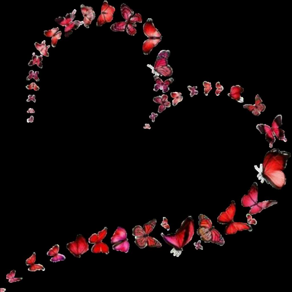#valentinesday #happyvalentinesday #valentine #myvalentine #bemyvalentine #sanvalentin #sticker