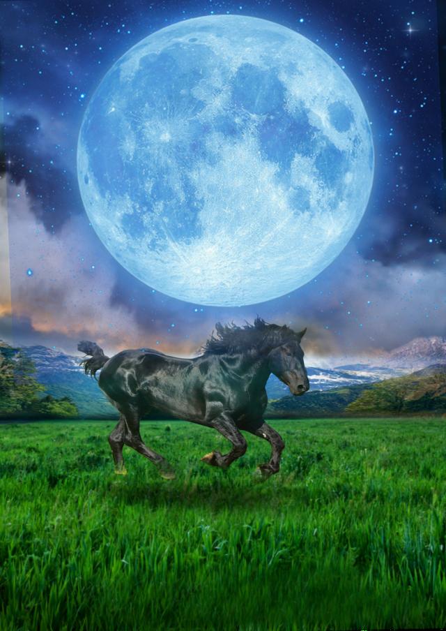 #freetoedit #nature #landscape #mountainrange  #wildhorse #moonlight #supeemoon #skylovers #skyporn #lauers #blending #editstepbystep #myedit #madewithpicsart