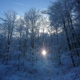 freetoedit snow myphoto naturephotography nature