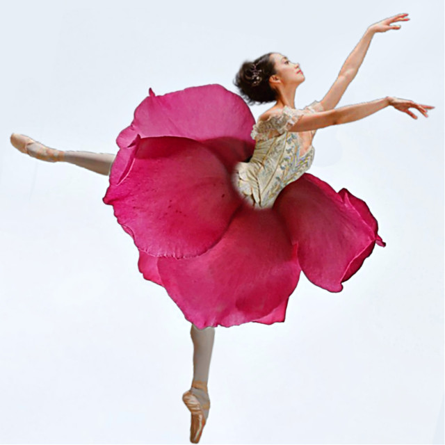 #video 👉 https://youtu.be/3TaFeZip4Uc Dance like a Flower 🌸🍃 An #edit from @idom béautiful #flower #photo #ballerina #freetoedit