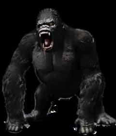 kong kingkong gorilla giants monsters