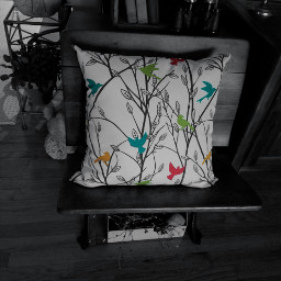 freetoedit pillow homedecor birds color
