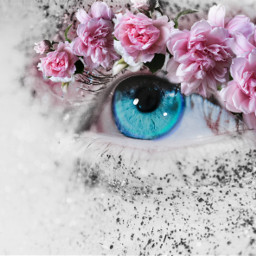 flowers blue eye pink blossoms freetoedit