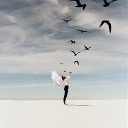 freetoedit remix girl birds angel
