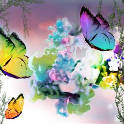 freetoedit butterflies smoke sk