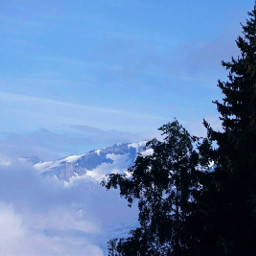 freetoedit mountain tree landscape bluesky pcdominantlyblue